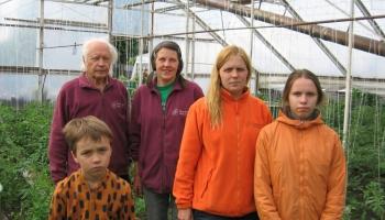 Elgas un Alda Bražūnu siltumnīcās aug 520 dažādas tomātu šķirnes
