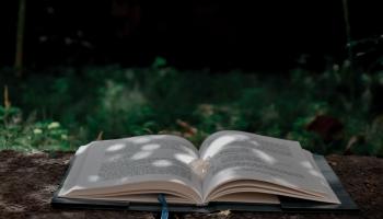 Grāmatizdevēju pieredze digitālajā Frankfurtes grāmatu tirgū