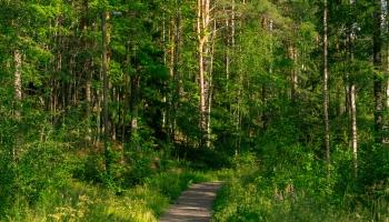Latvija kā tūrisma lielvalsts