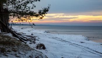 Lielākie dabas pētījumi šobrīd Latvijā