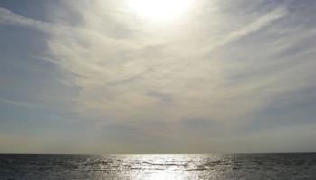 """Dace Priede """"Mēnesstars pār jūru"""""""