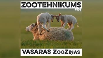Vasaras ZooZiņas
