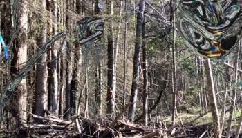 Ginta Gabrāna jaunais papildinātās realitātes projekts ir vairāk eksperiments prieka pēc
