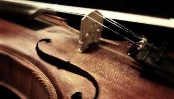 Zinātne par vijoli