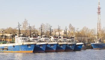 Kas notiek Latvijas zivsaimniecības nozarē?