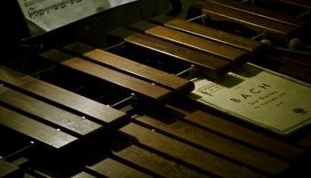 Marimba - instruments, kura spēles meistarību var pārbaudīt pusdienojot