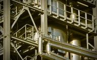 Iespējas aizstāt ķīmiskās vielas ar videi draudzīgākām ražošanā un dzīvot zaļāk
