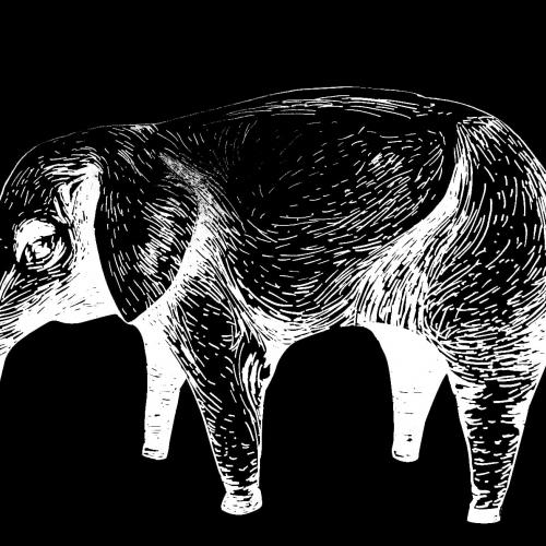 "# 209 The Pink Elephant - albums ""Cassette Concert"" (2016)"