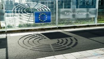 Много денег не бывает: как подрабатывают Евродепутаты