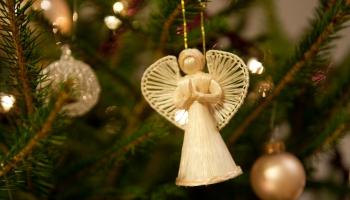 12. Ziemas festivāls Kuldīgā, Rīgas festivāli, koncerti un citas izklaides nedēļas nogalē