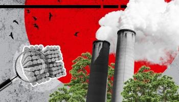 #33 Latvija granulu ražošanas lielvalsts: vai industrija kaitē klimatam