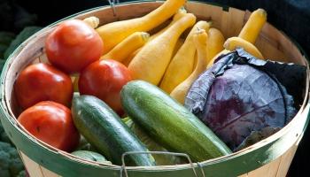 Dārza darbi: Dārzeņu klāstam dārzā jābūt dauzdveidīgam
