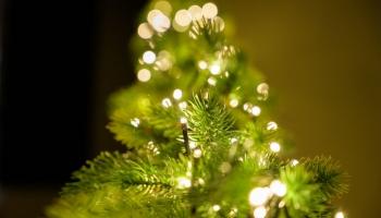 """Sirsnības piestarotais labdarības koncerts """"Nāc līdzās Ziemassvētkos"""""""