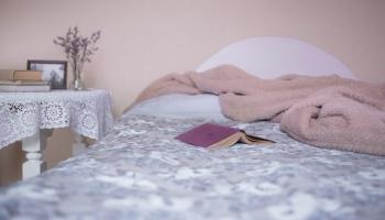 Vasaras un ziemas miegs: kā gulēšanas ieradumus ietekmē apkārtējie apstākļi