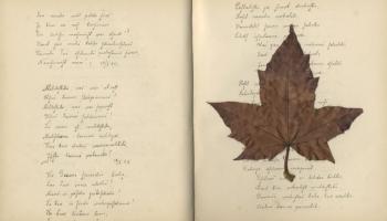 Lasīšanas vēsture 19.gadsimtā. Lilijas Limanes eseja