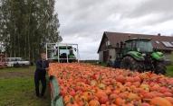 """Viesojamies Latgalē - bioloģiskājā saimniecībā """"Salenieki"""" Rožkalnu pagastā"""