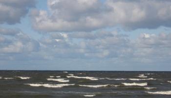 Мусора на балтийском побережье становится все больше