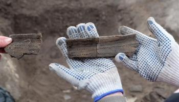 Археоботаника в действии. Ископаемая еда