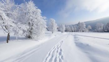 Sniegota rīta podkāsts