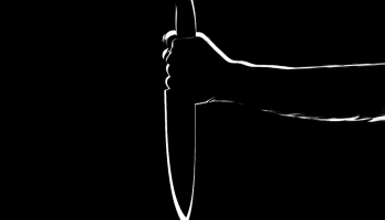 2 000 евро за нелюбимого мужа: госполиция предупредила заказное убийство
