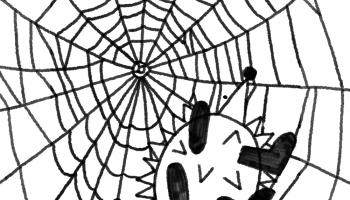 Ezītis pārvar bailes no zirnekļiem